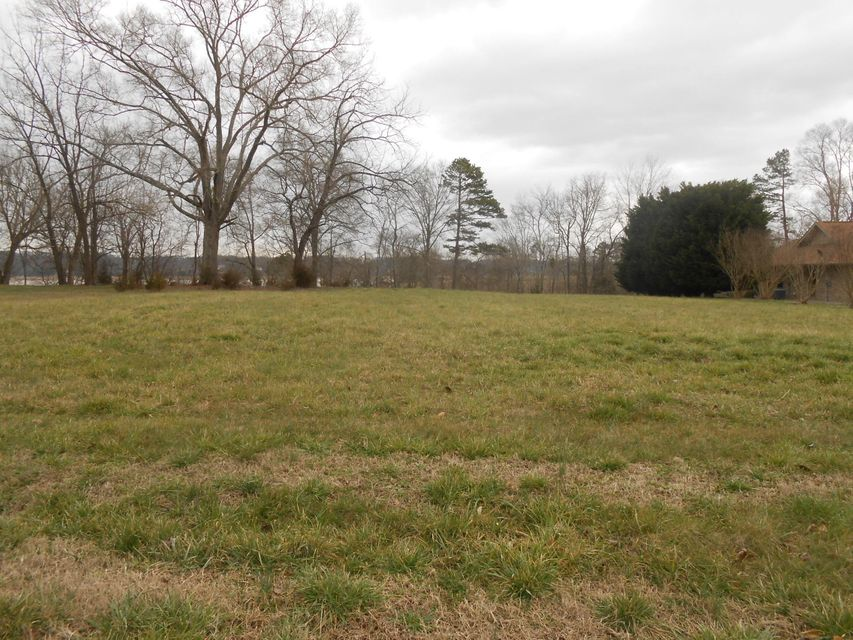 Beautiful 1 acre level lot on Douglas lake on the water. Build your dream home in a quiet subdivision directly on the lake.