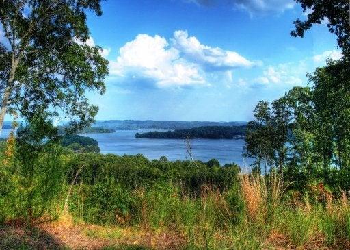 Eagle Point - 163 acres