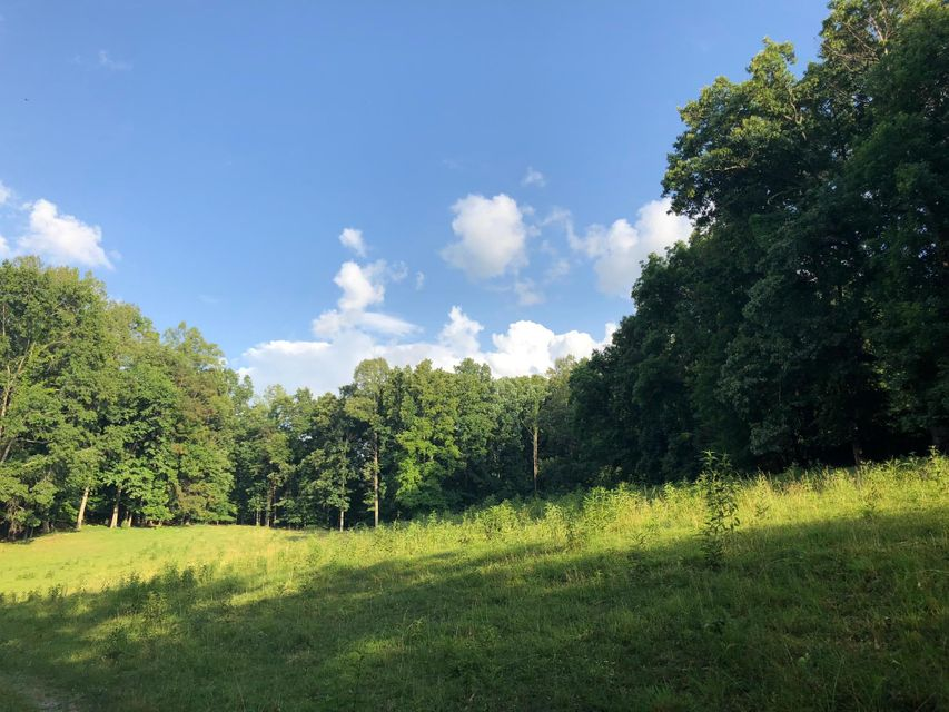 Endless possibilities with this property! This land is located half a mile from Norris lake and only minutes from the city of Maynardville. Property is mostly pasture but has some mature timber also. Property is set up for a cattle farm and has a barbed wire fence already around the property.