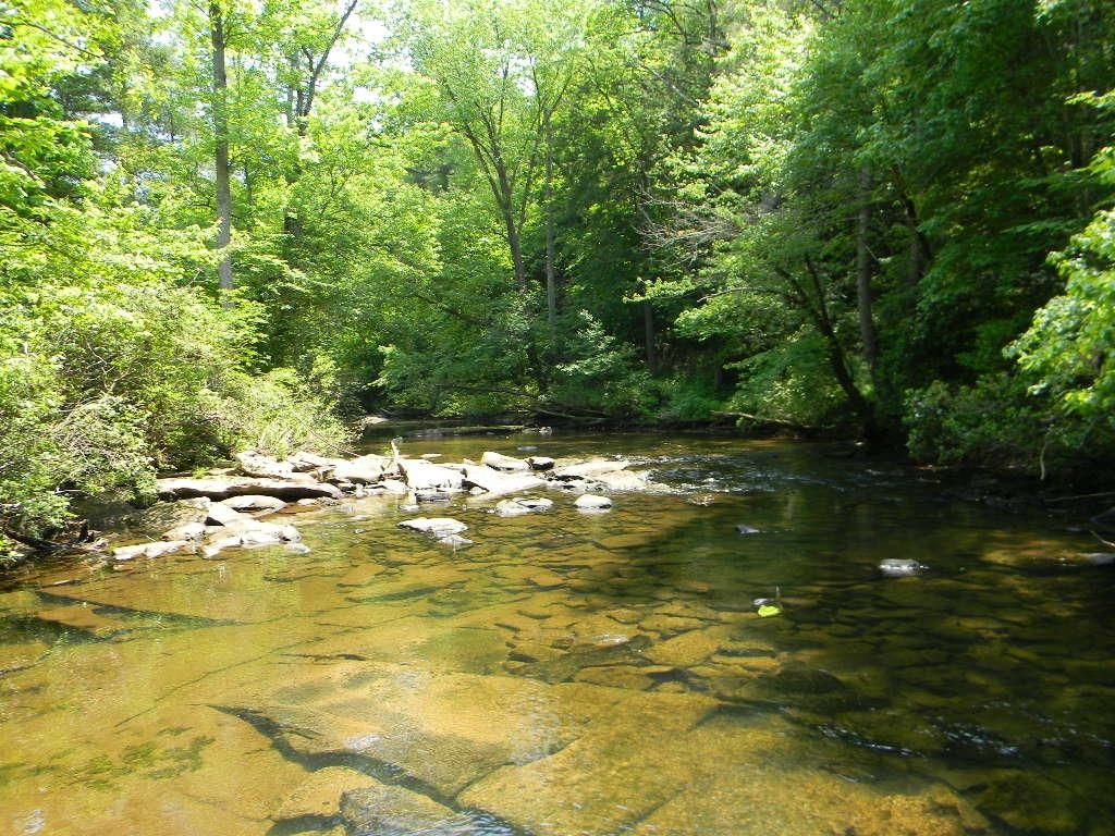 06 Daddy's Creek