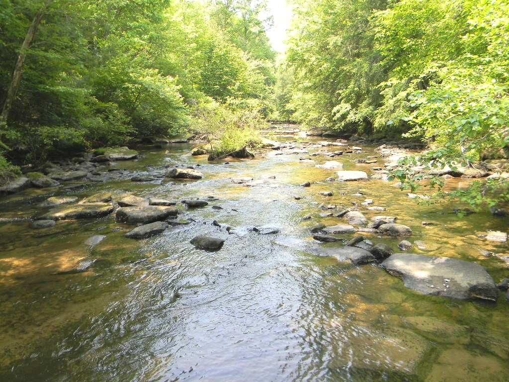 07 Another View of Daddy's Creek