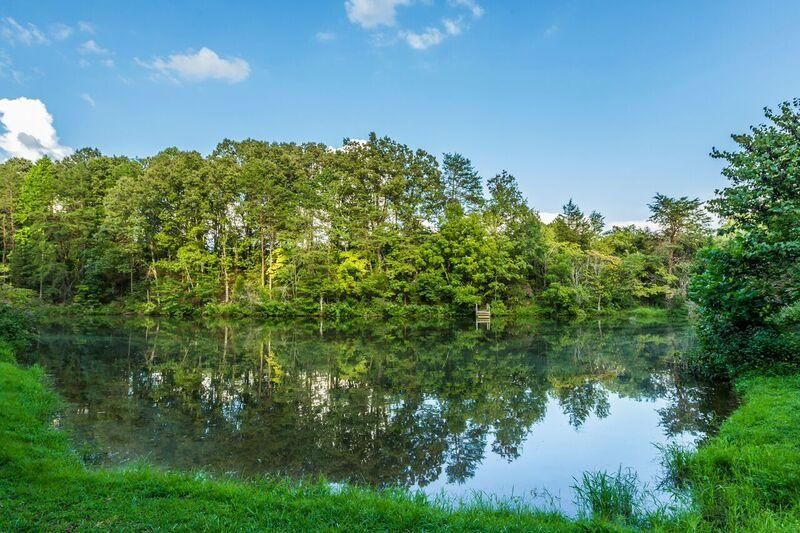 3+ acre spring fed pond