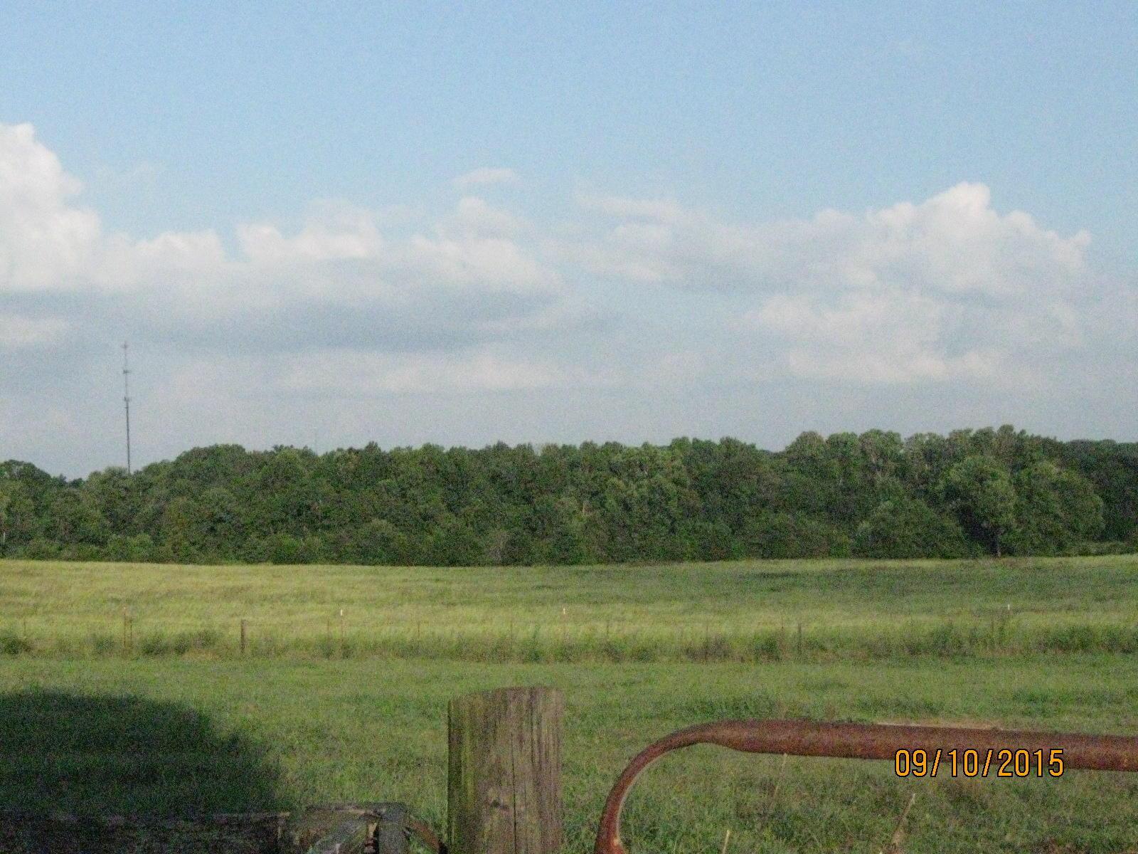Cox Rd fields...