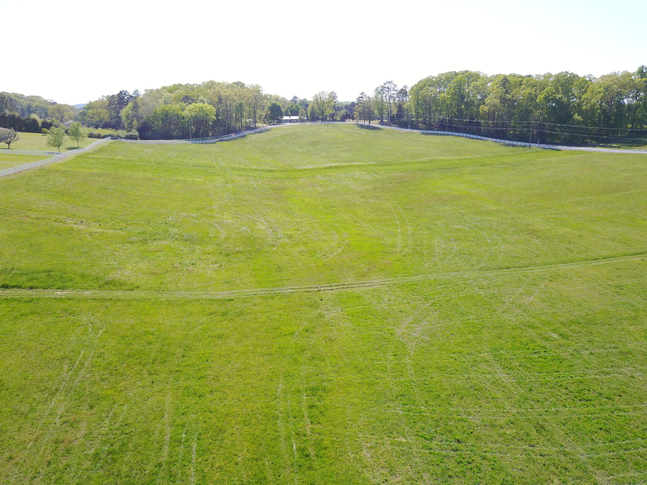 5 - back field
