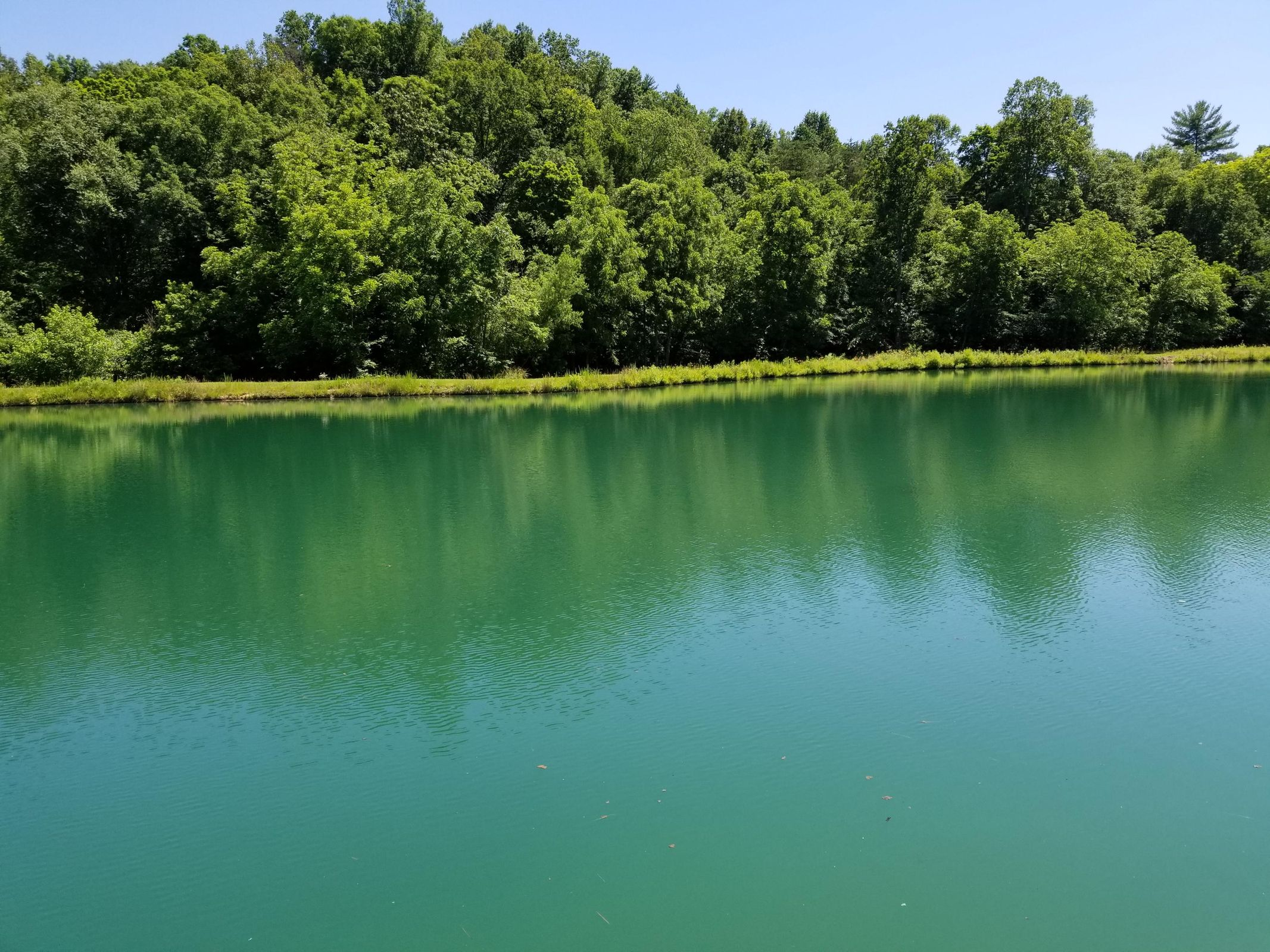 Well Stocked Lake
