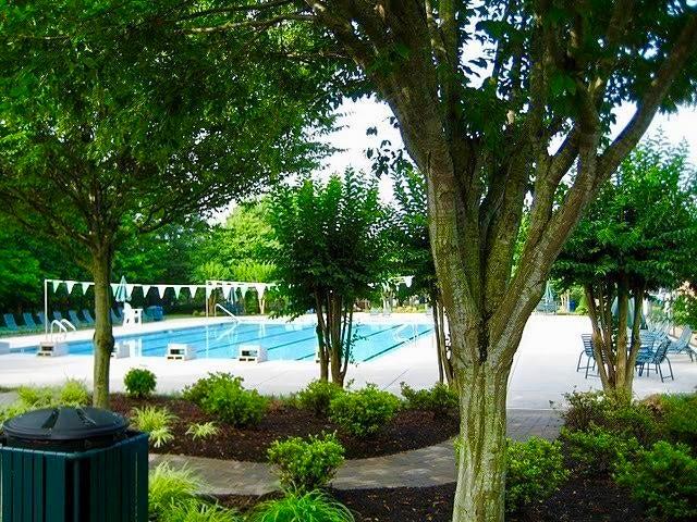 Neighborhood Pools