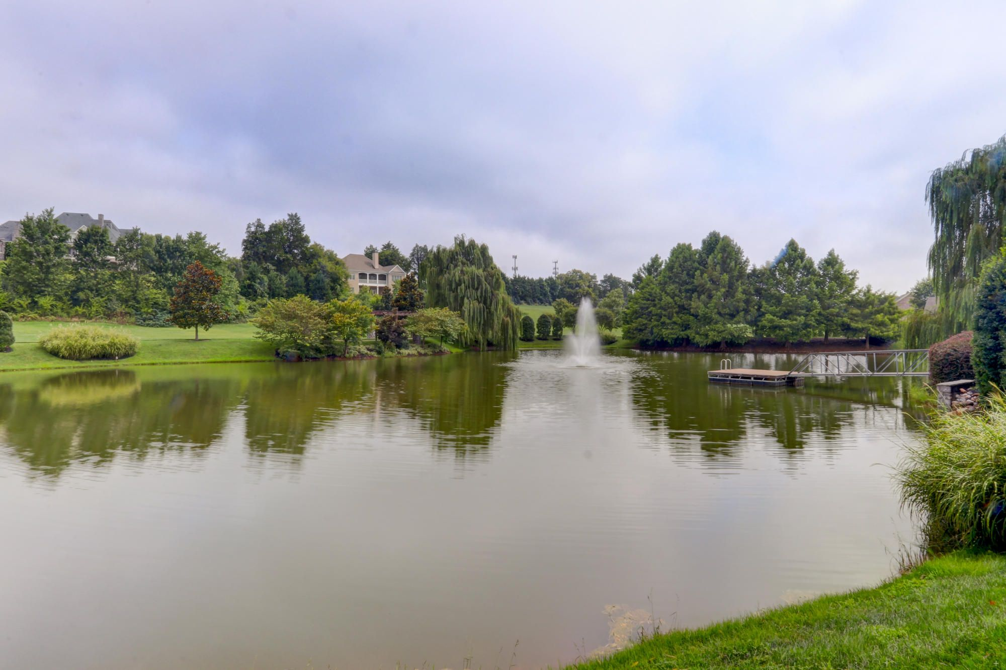 Ivy Lake #1