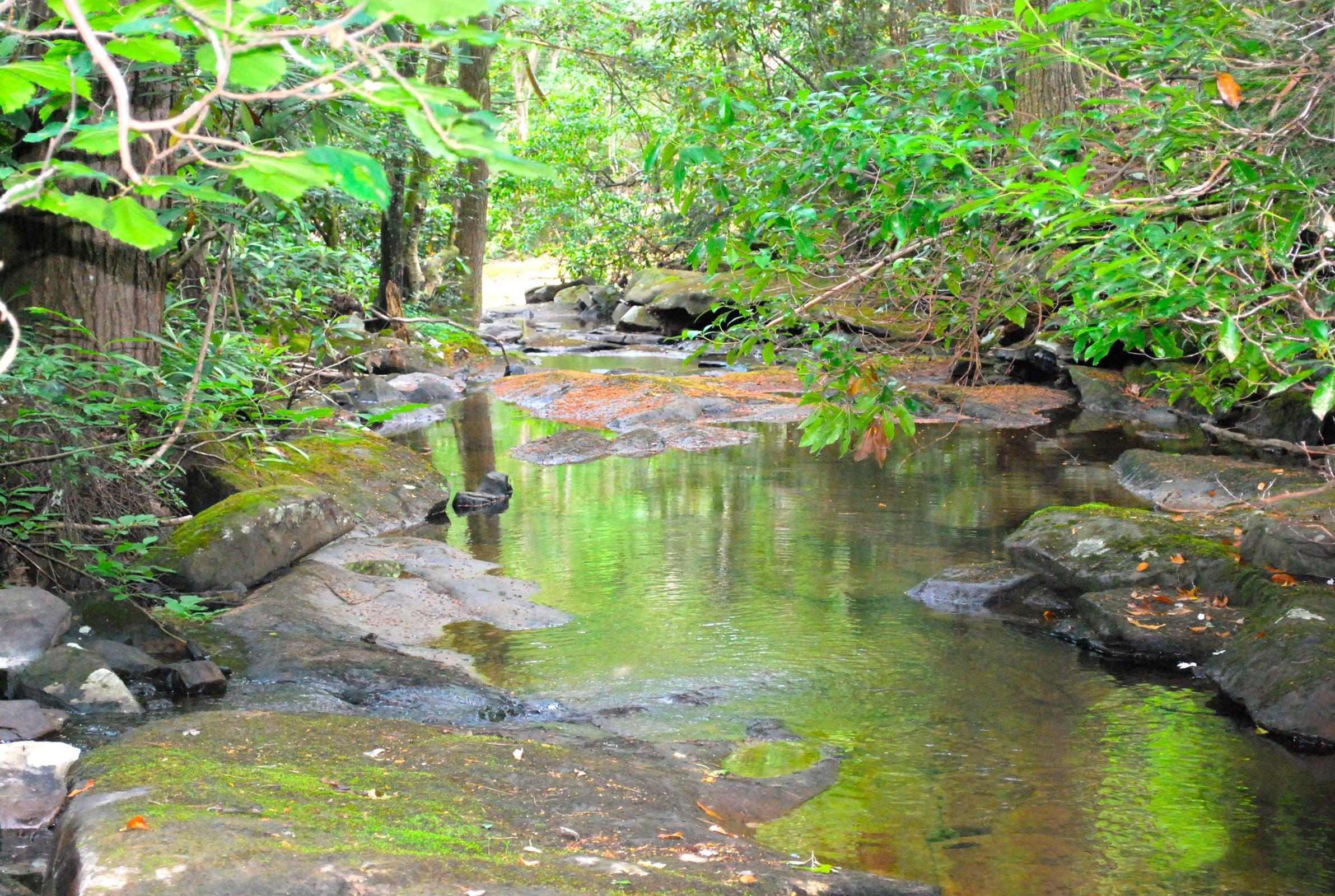 1_Basin Creek 1_Edit