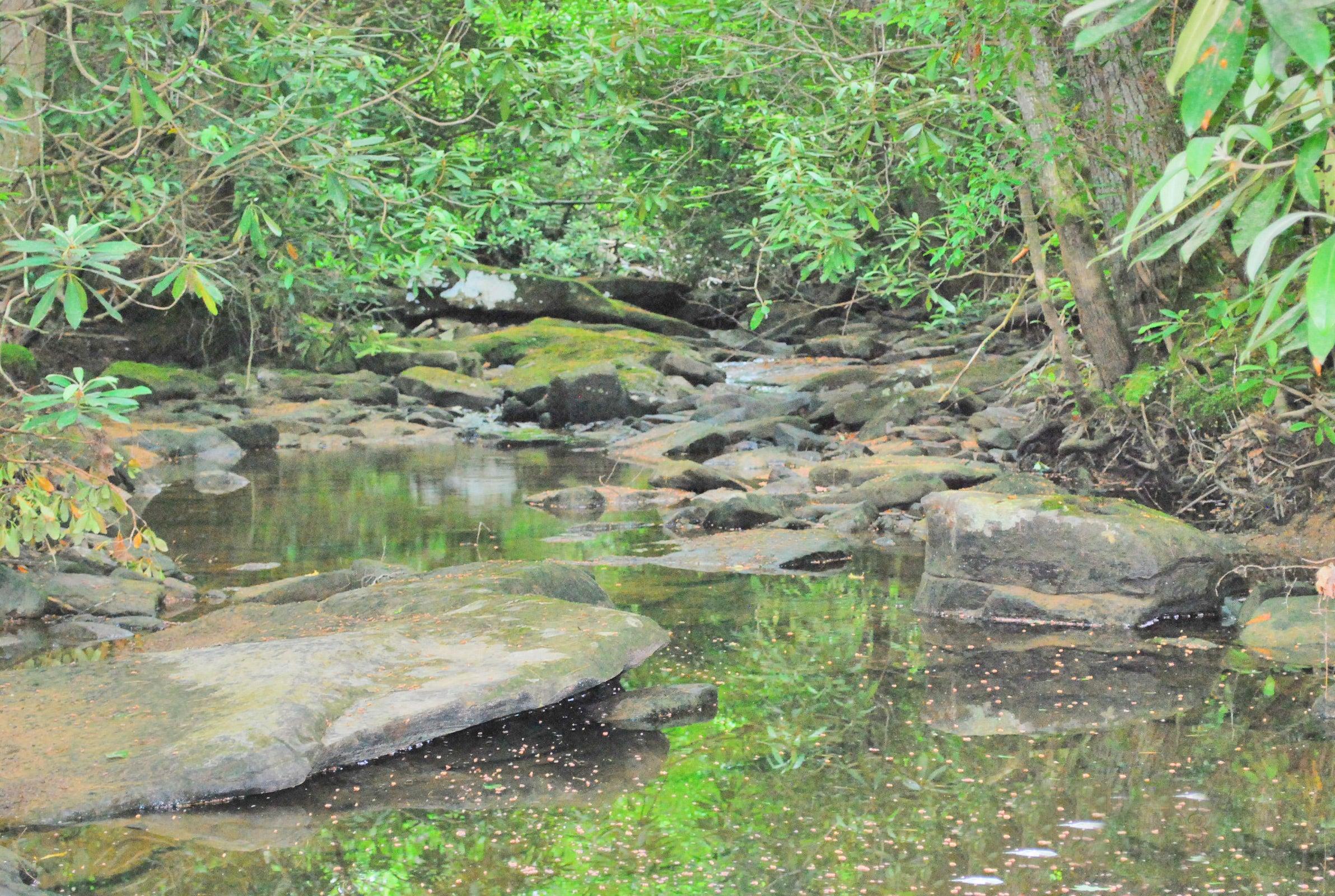 9_Basin Creek edt