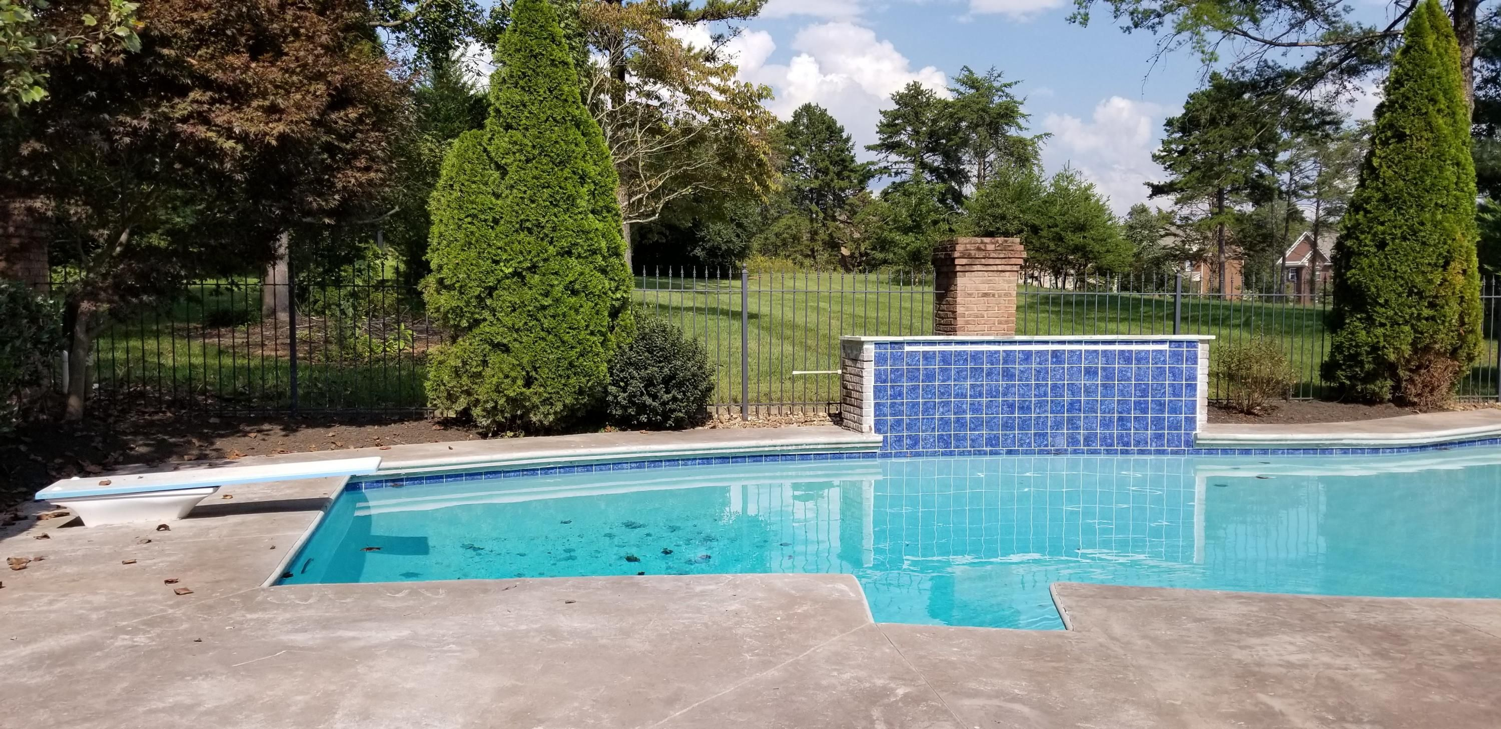 Diving Board on pool