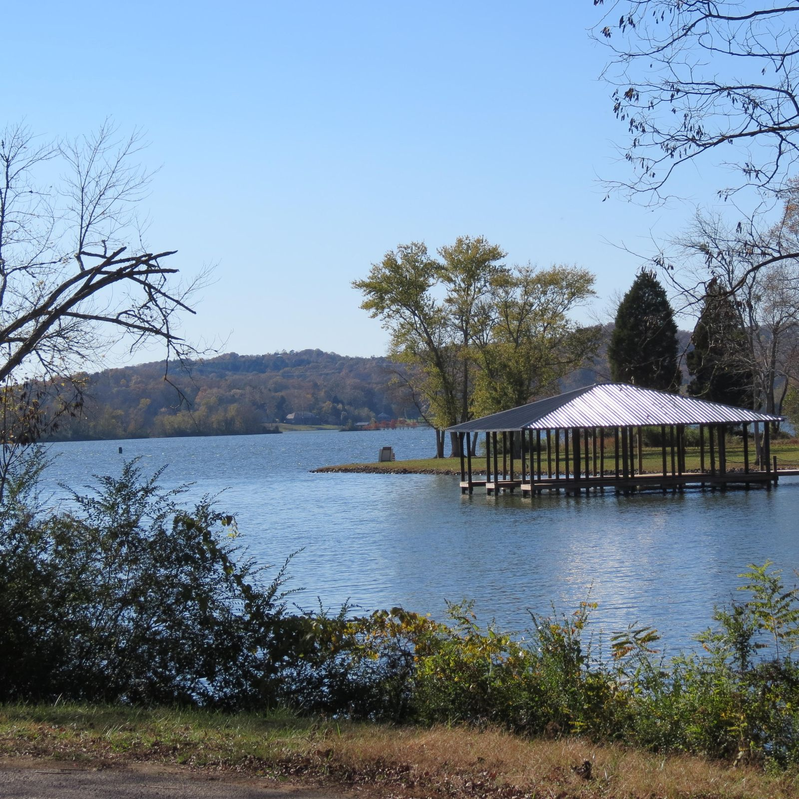Lake Hen