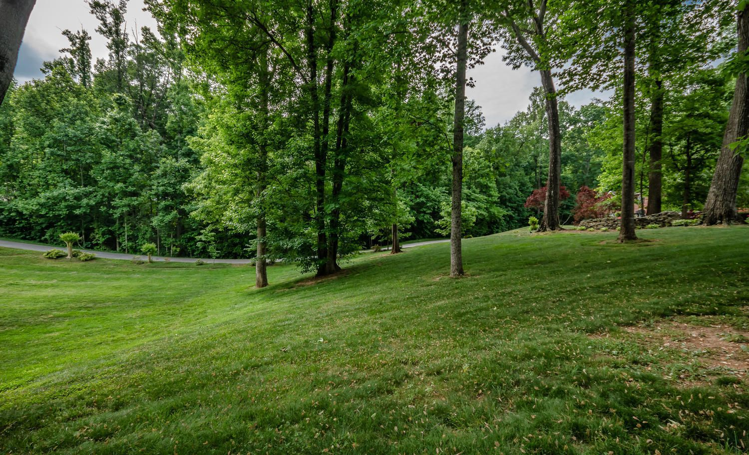 313 Wooded Ln Knoxville TN-large-005-23-