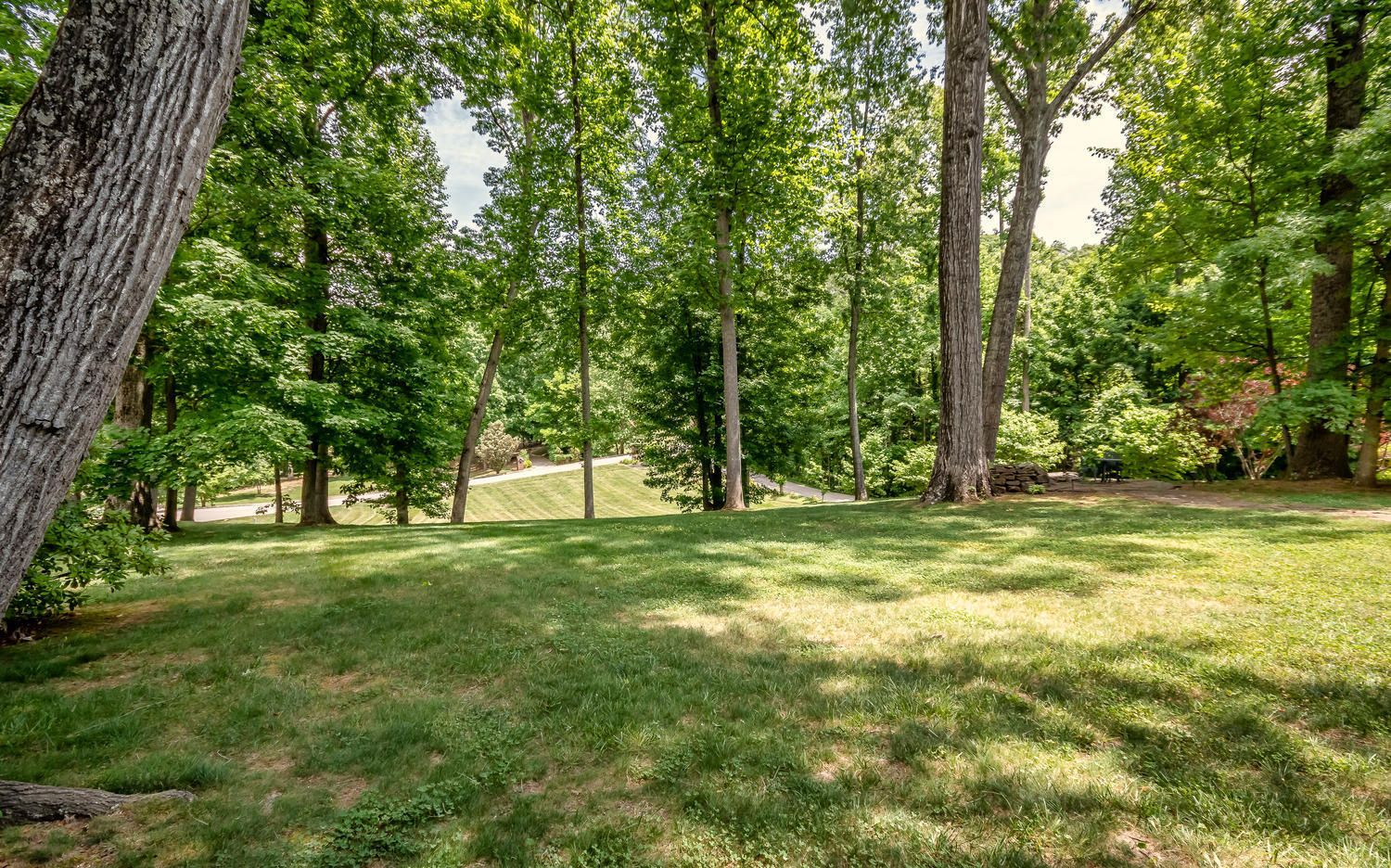 313 Wooded Ln Knoxville TN-large-006-31-