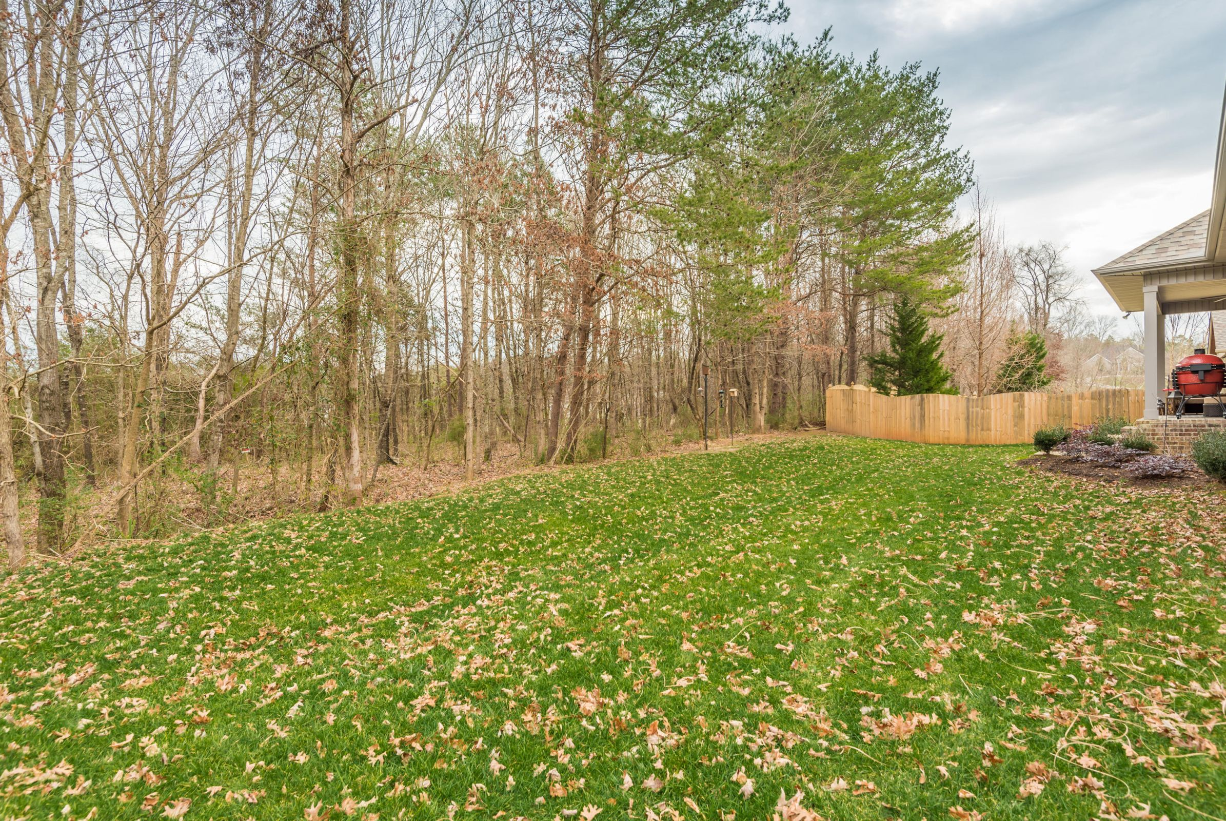 Wooded, Private Backyard