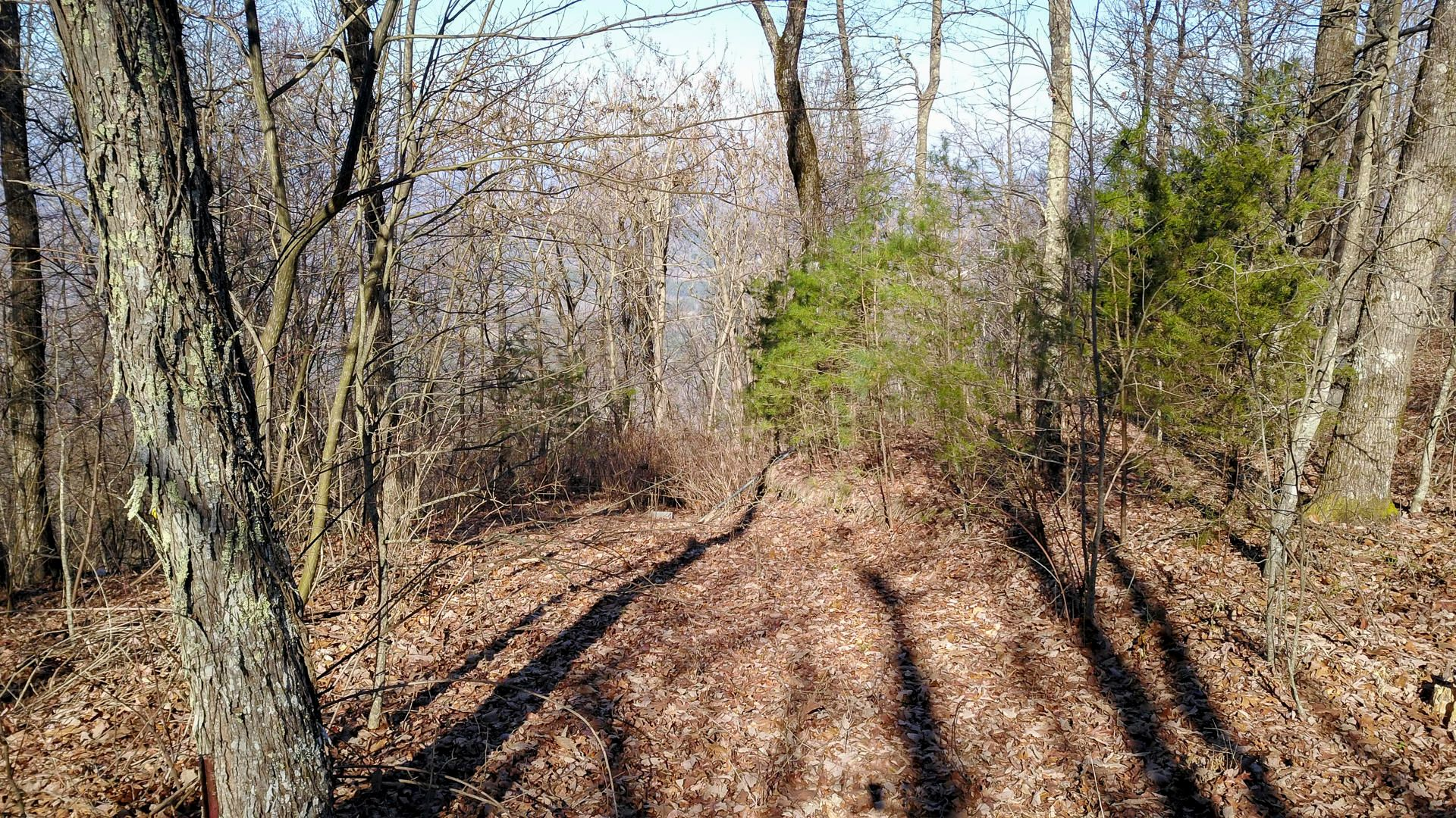 Great Lot to Build Your Dream Home!
