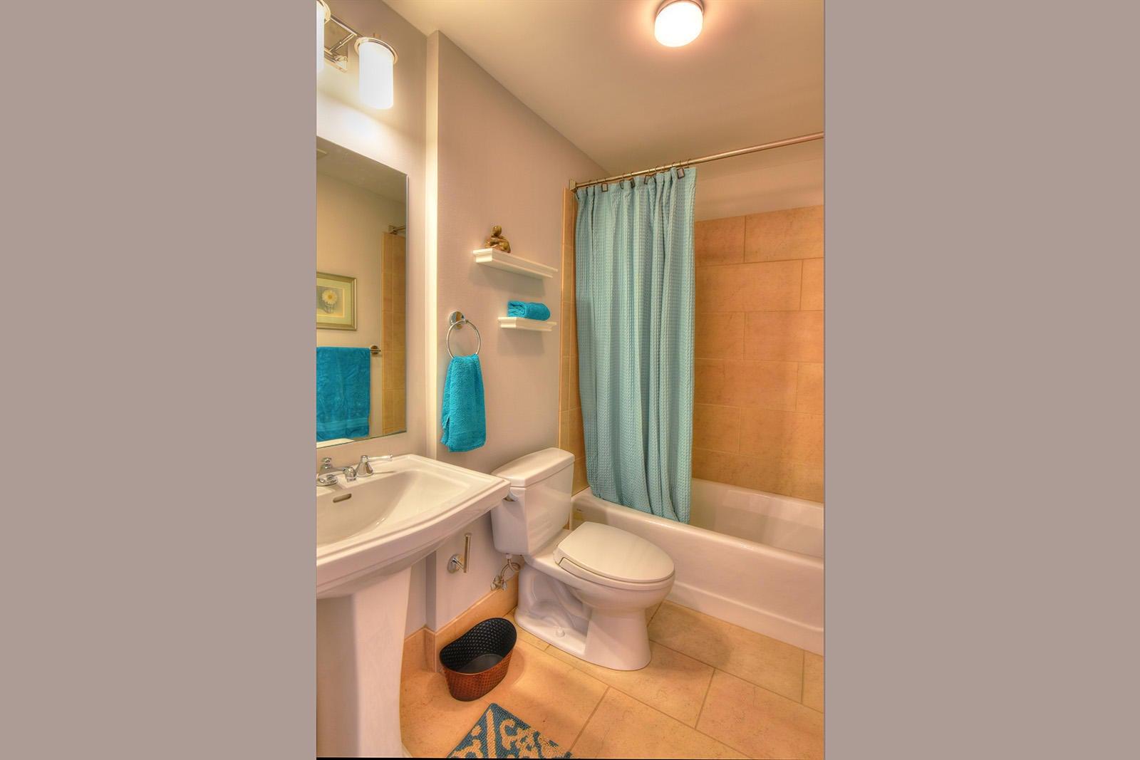 Holston 503 - 20 Guest Bath
