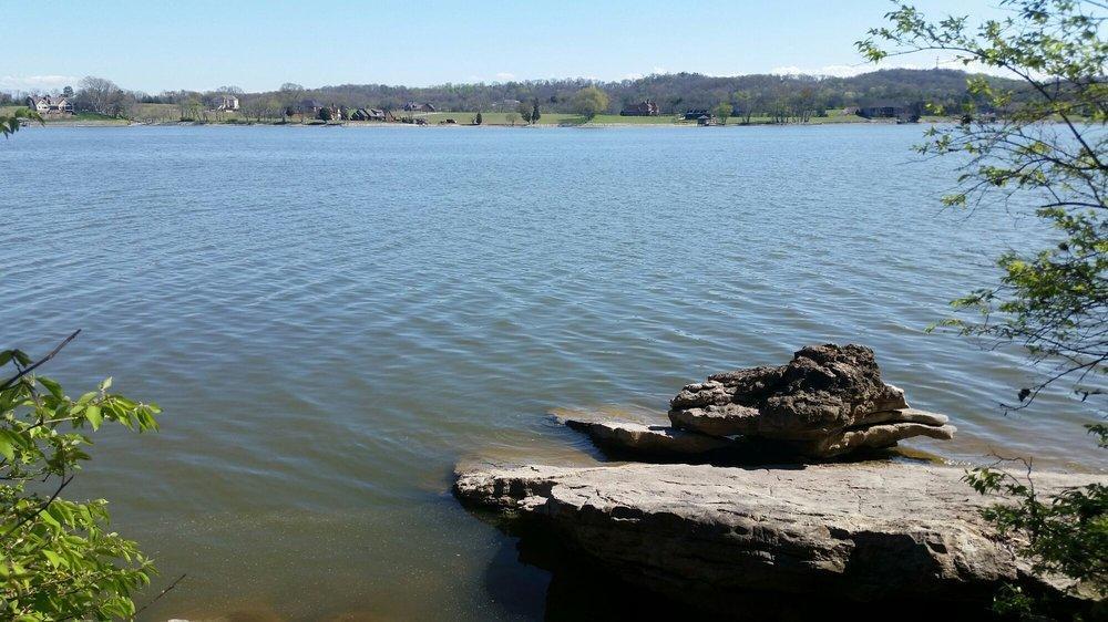 Carl Cowan Lake View