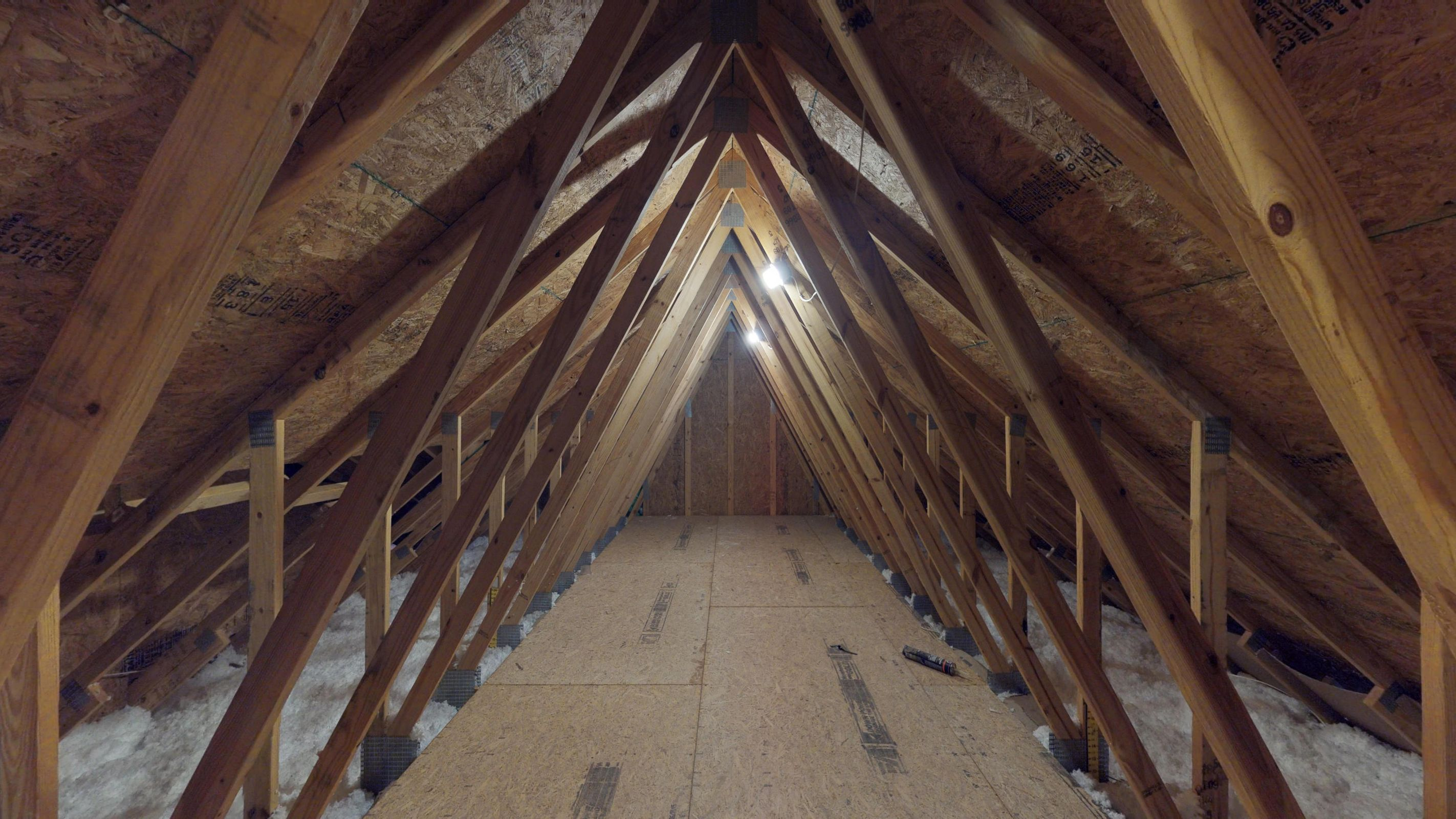 Unfinished Attic Storage