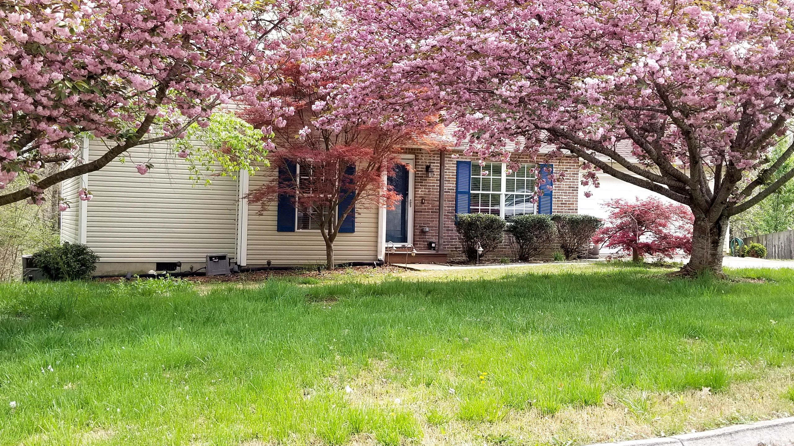 Front w/flowering trees