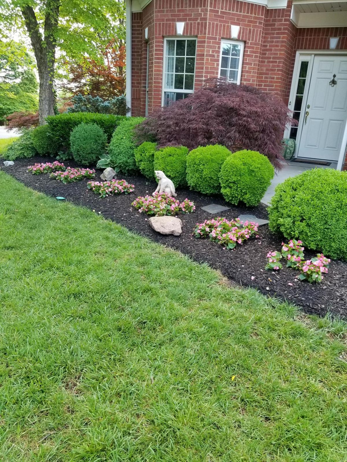 Front flowerbed