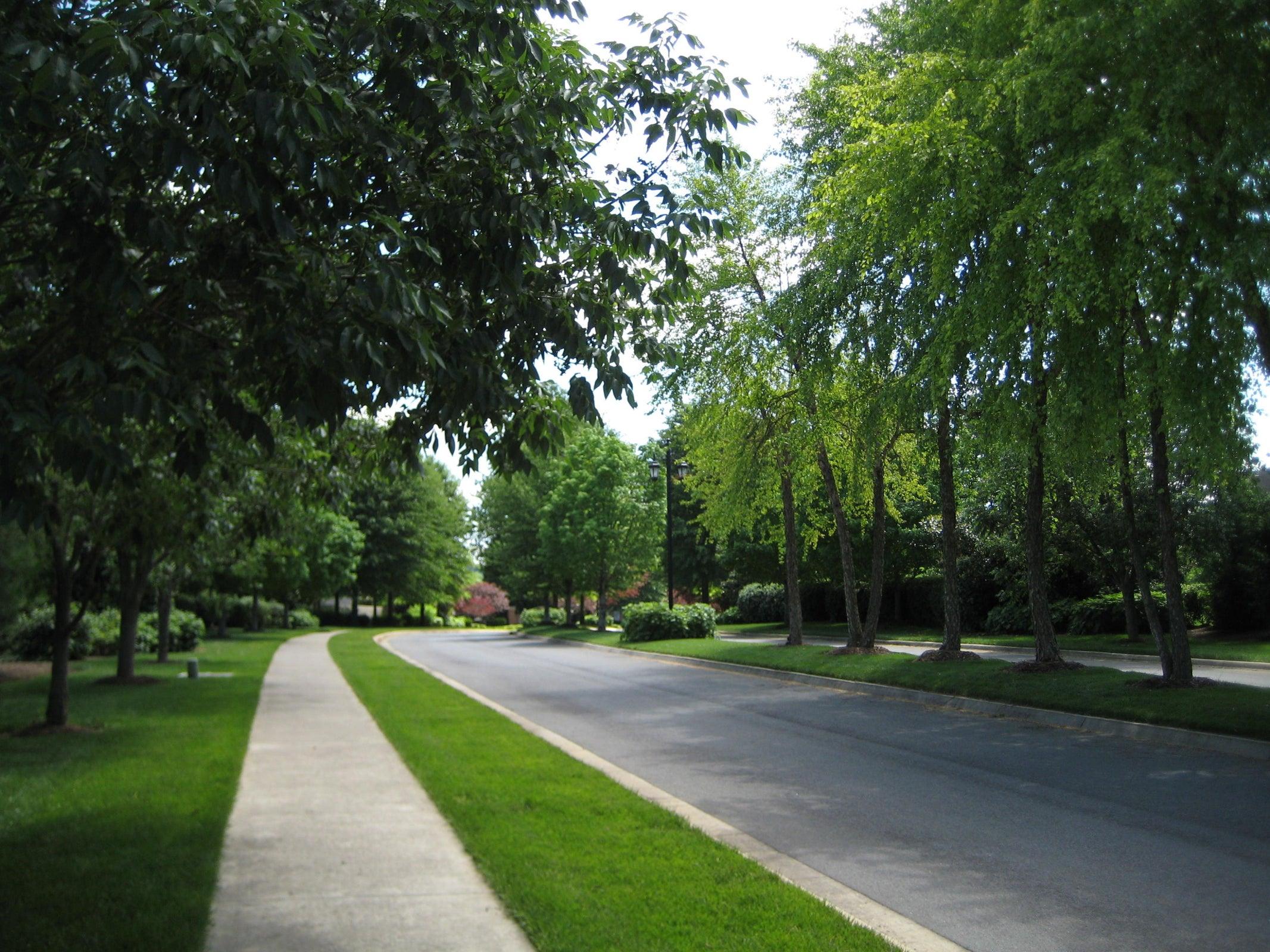 Whittington Creek Boulevard