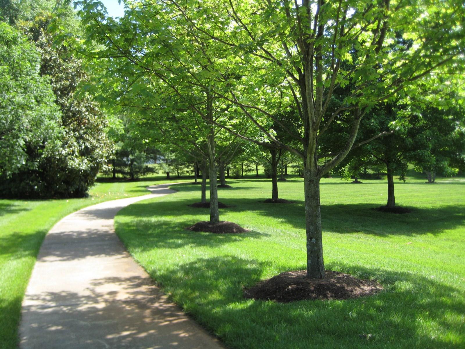 Neighborhood Walking Trail