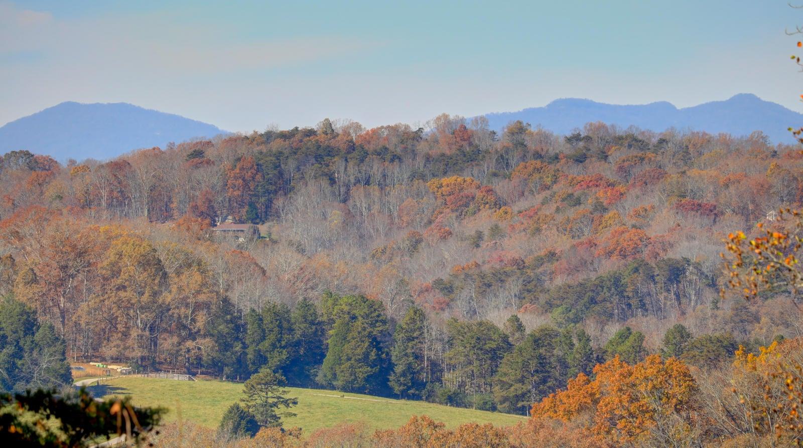 Hayden Hill Mountain Views