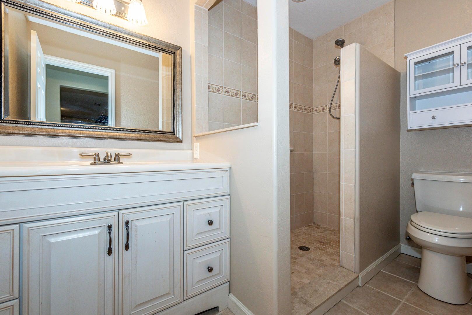 Lower Level Guest Bath