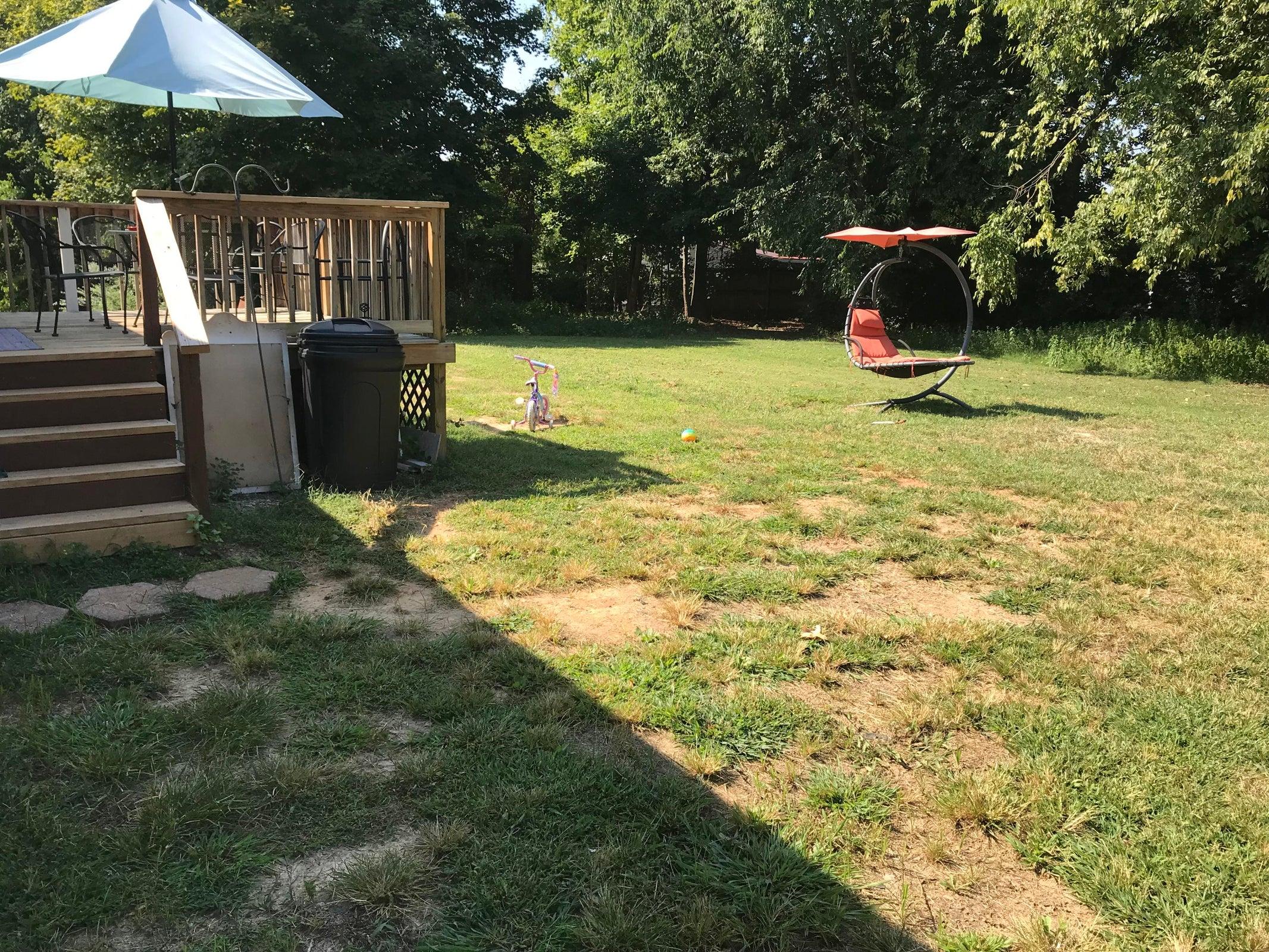 806 Old McGinley backyard