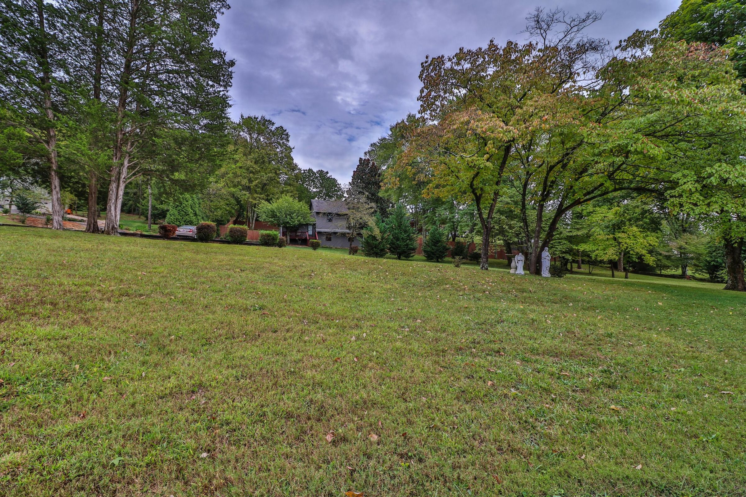Full Backyard view for both lots to pine