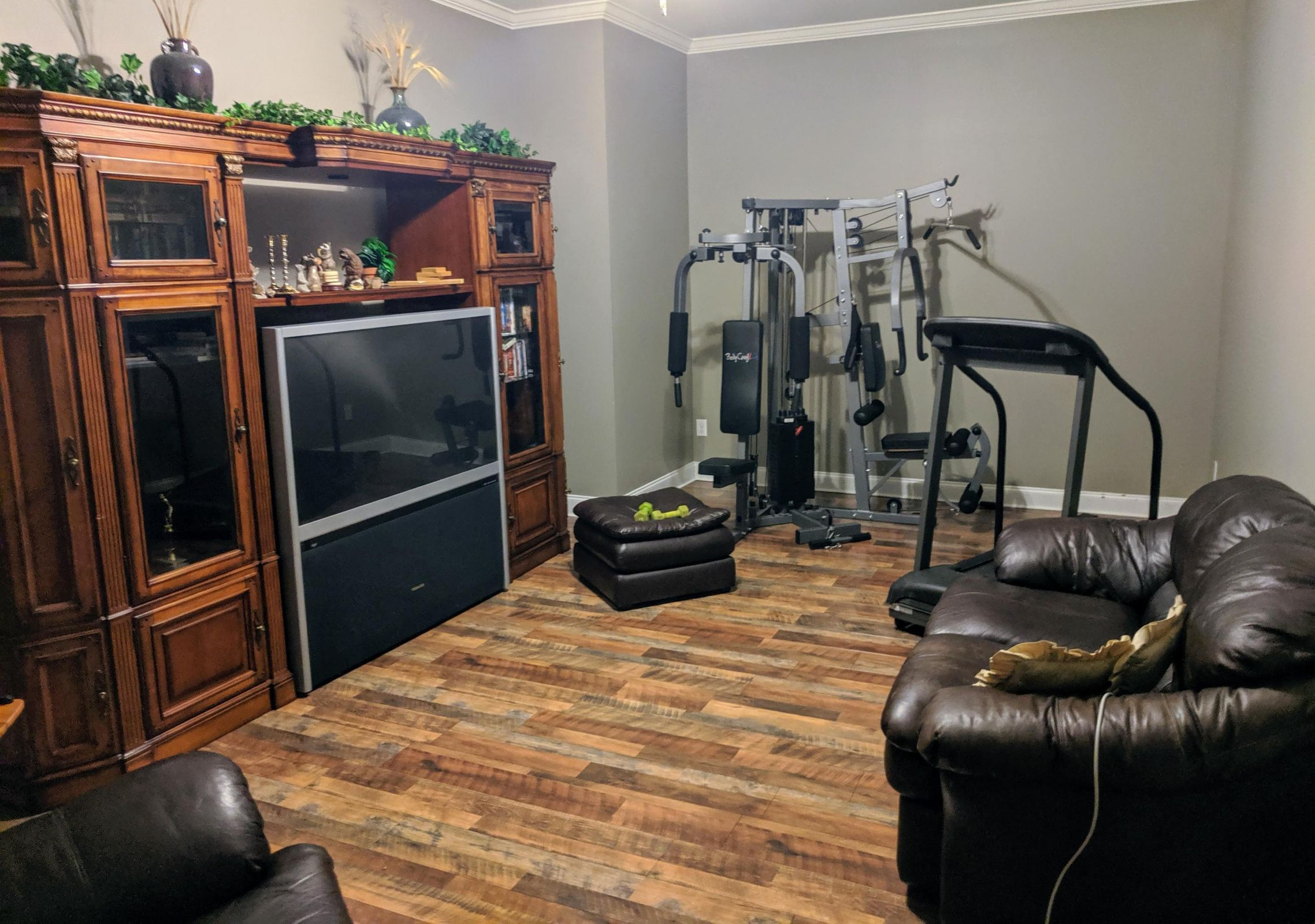 Downstairs media / exercise room