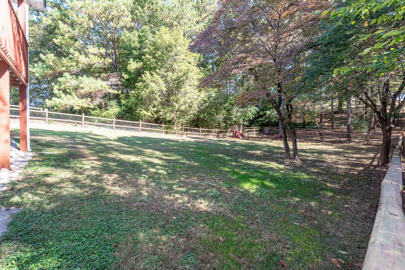 21 - backyard