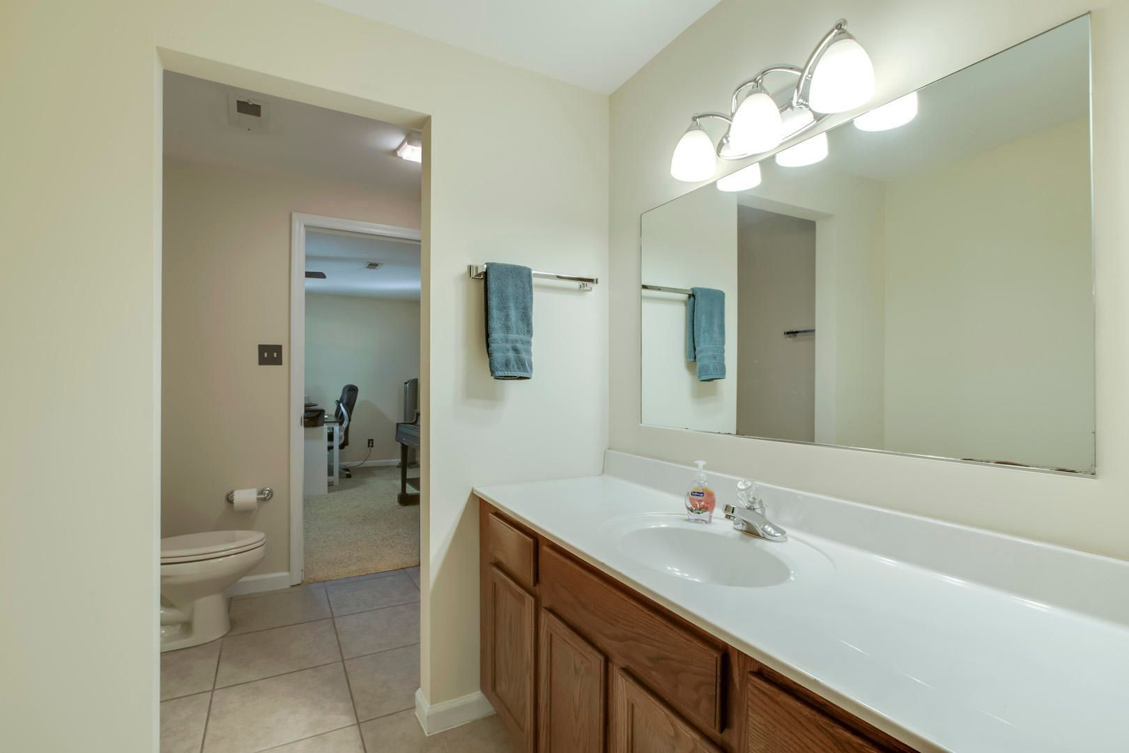 Basement Guest Bathroom