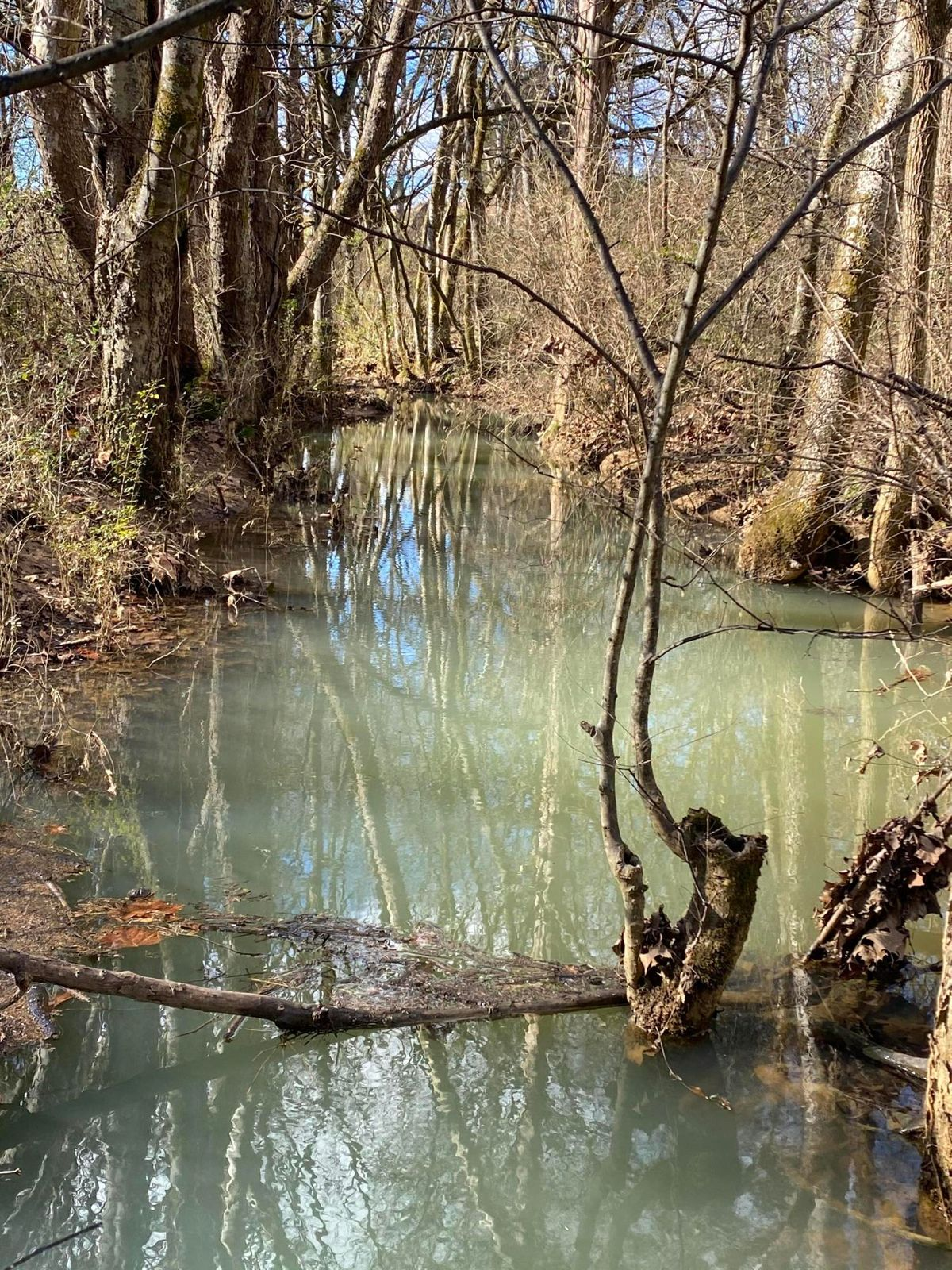 All Weather Creek on Property