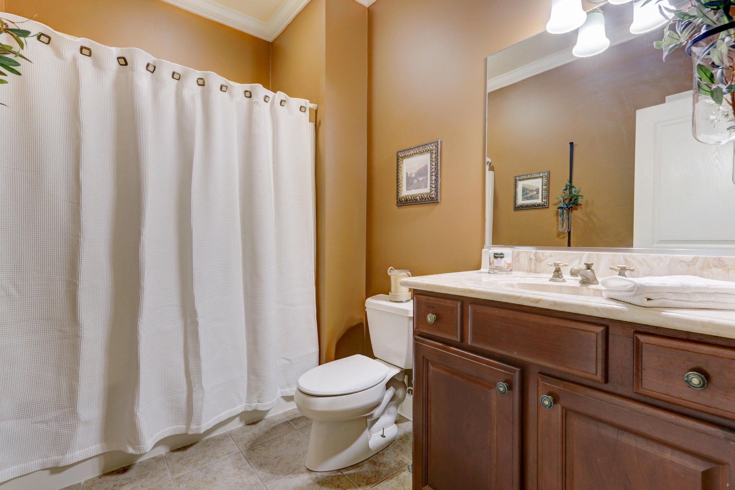 Hall Bathroom Main Level