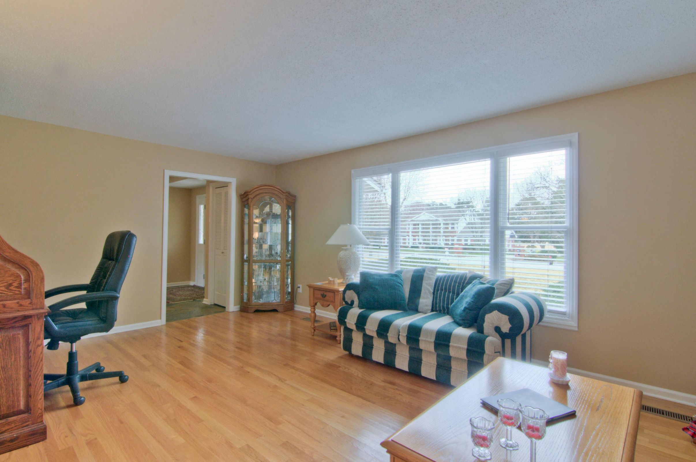 LIVING ROOM-SPACIOUS W GREAT WINDOWS