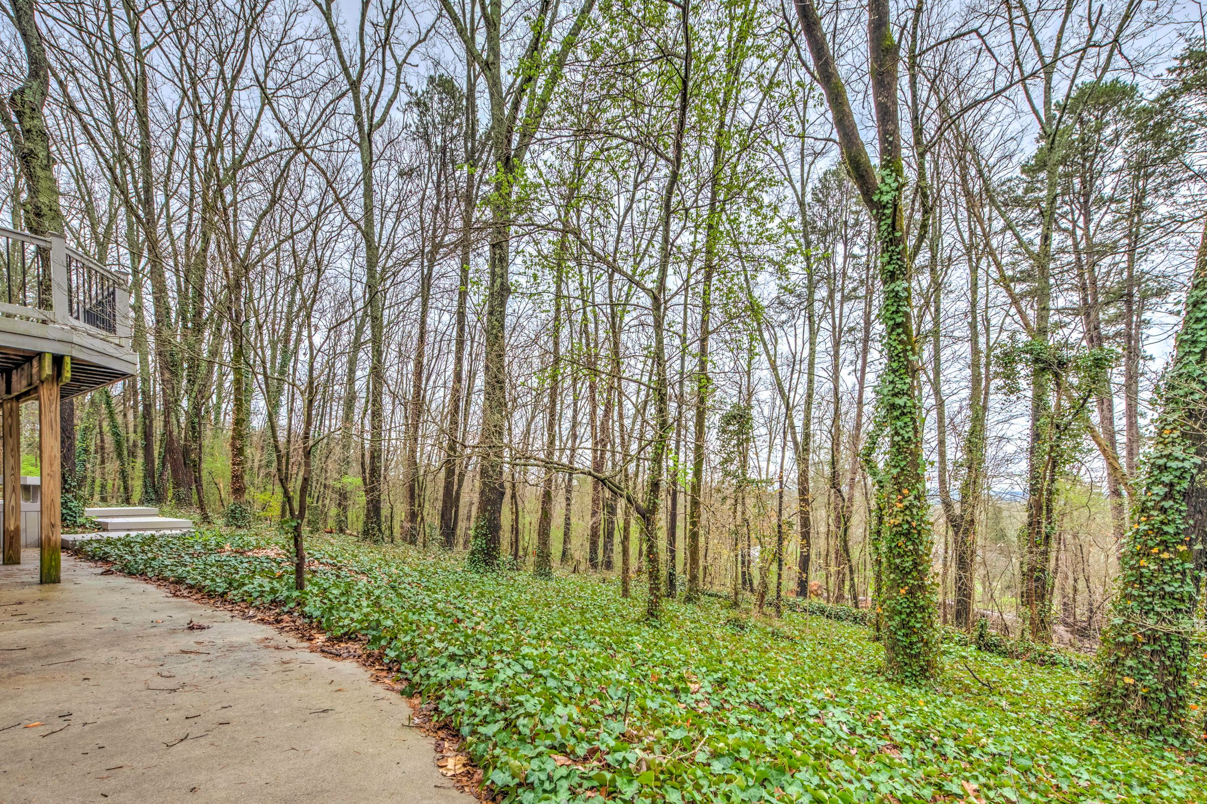 Large wooded lot