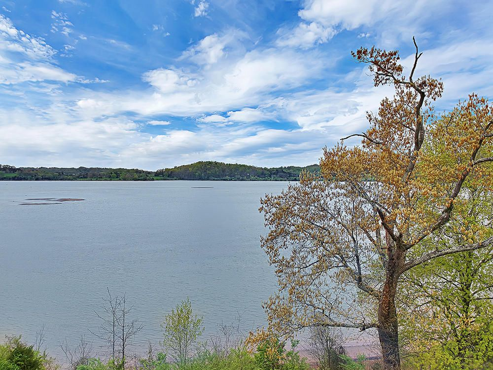 117 Jones Lake Way -36