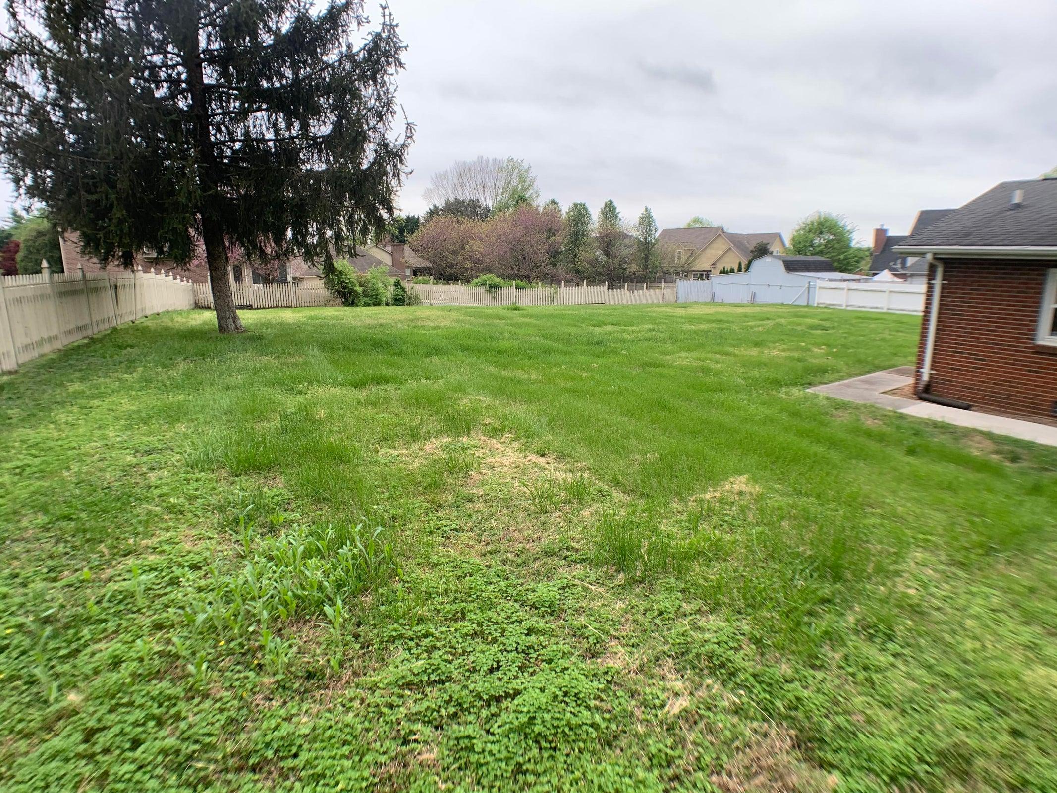 Side/ backyard 1923