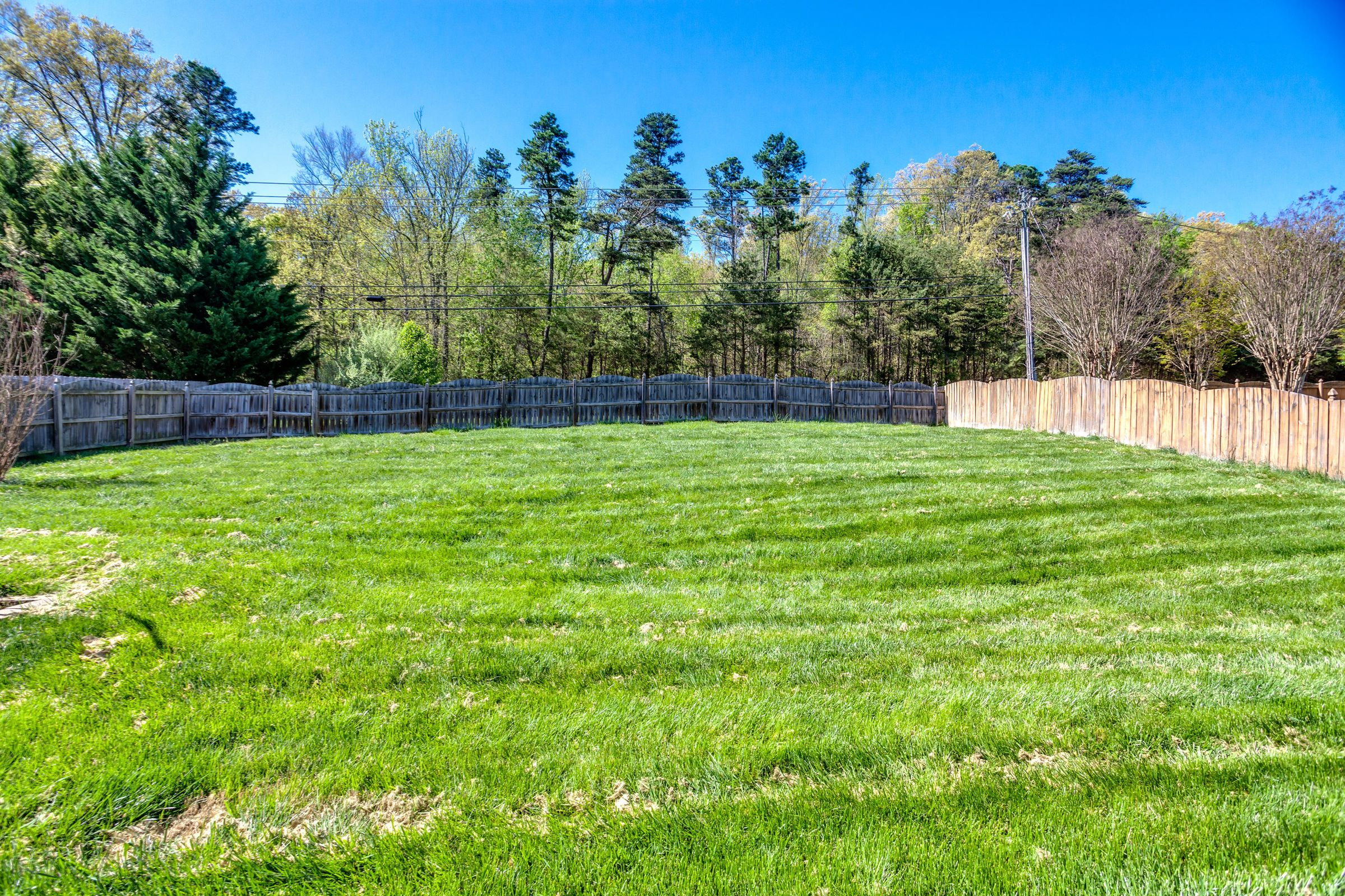 1151 Paxton Drive - Backyard 1