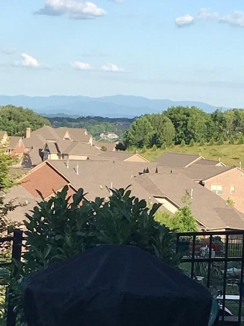 Dunlin - Mountain View1