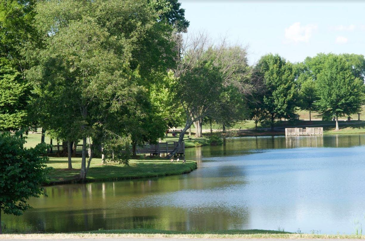 Dunlin - Park