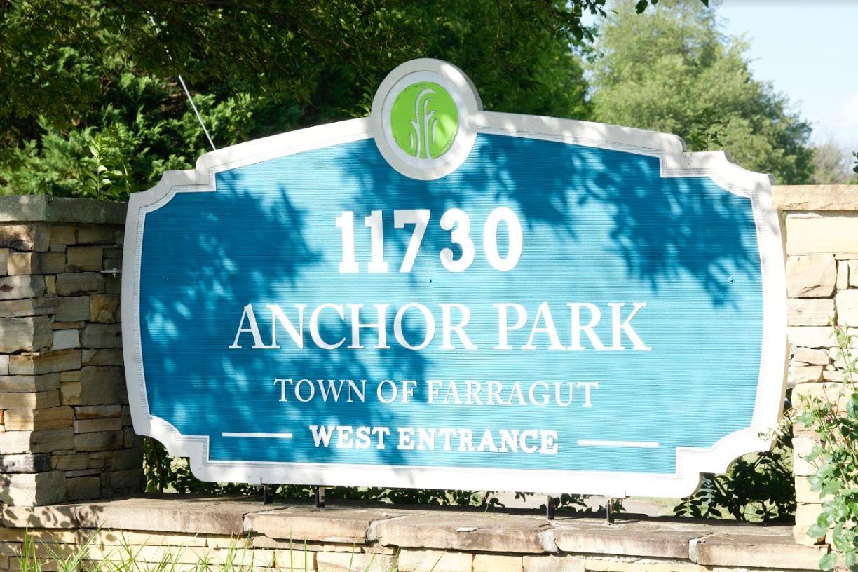 Dunlin - Anchor Park