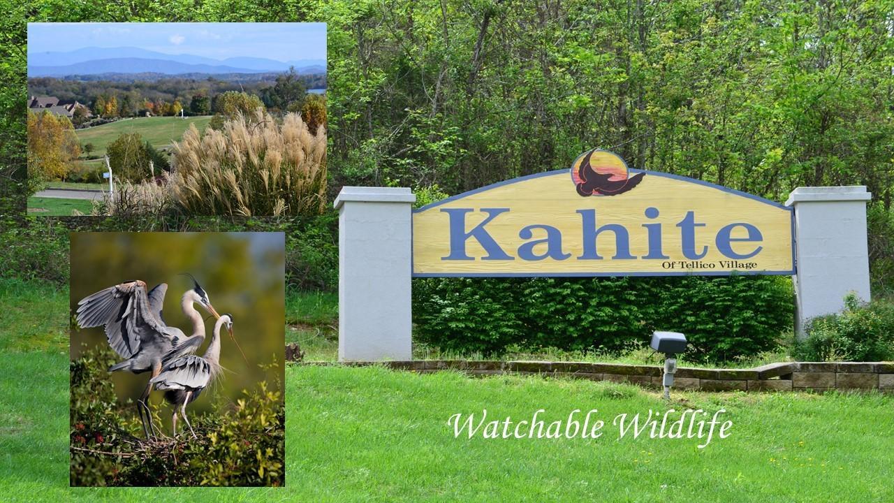 Kahite Neighborhood of tellico Village