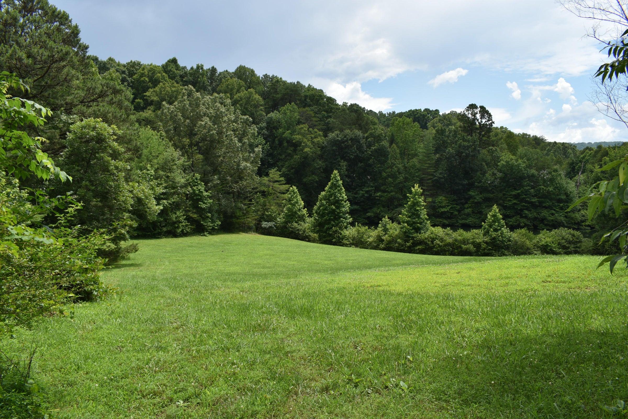 5 acres of pasture