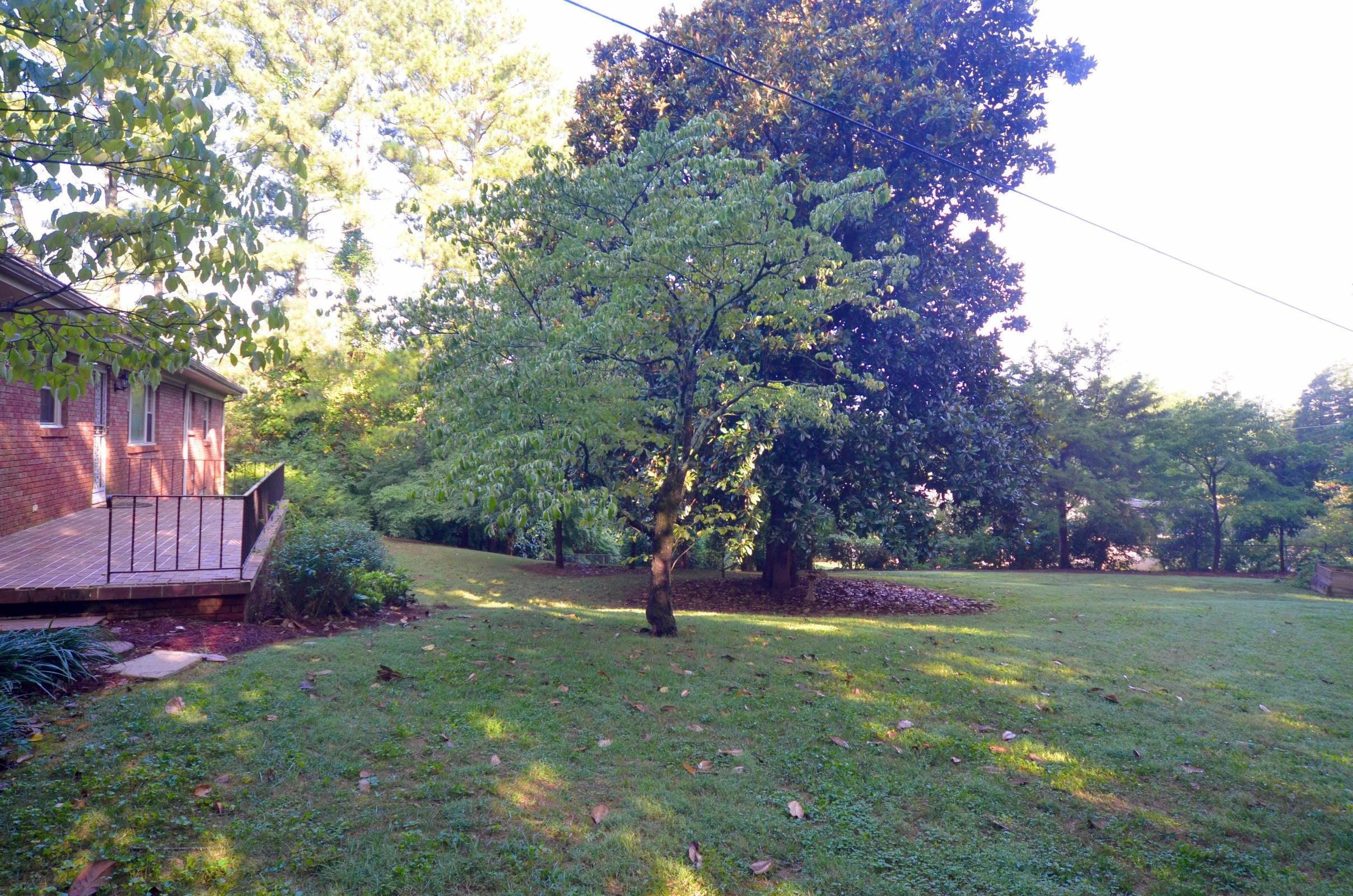 Wonderful backyard