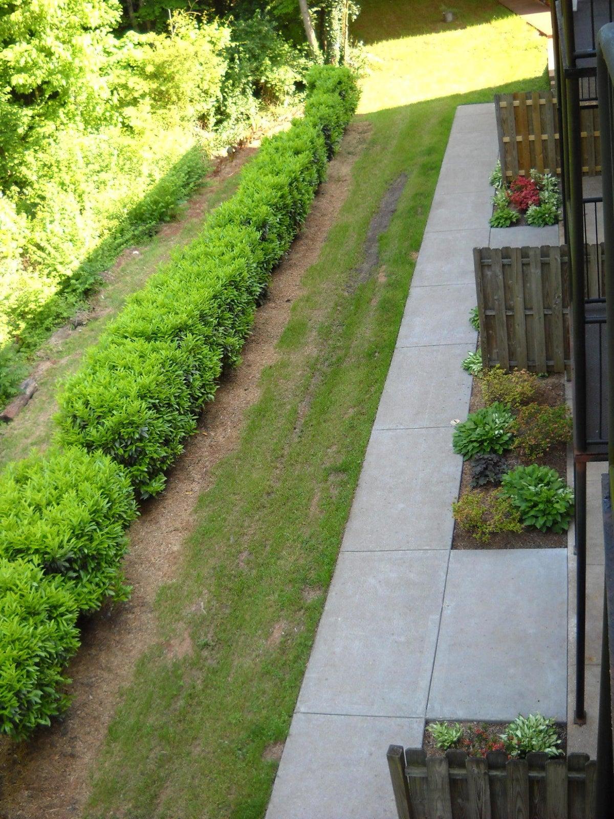 Back Balcony View