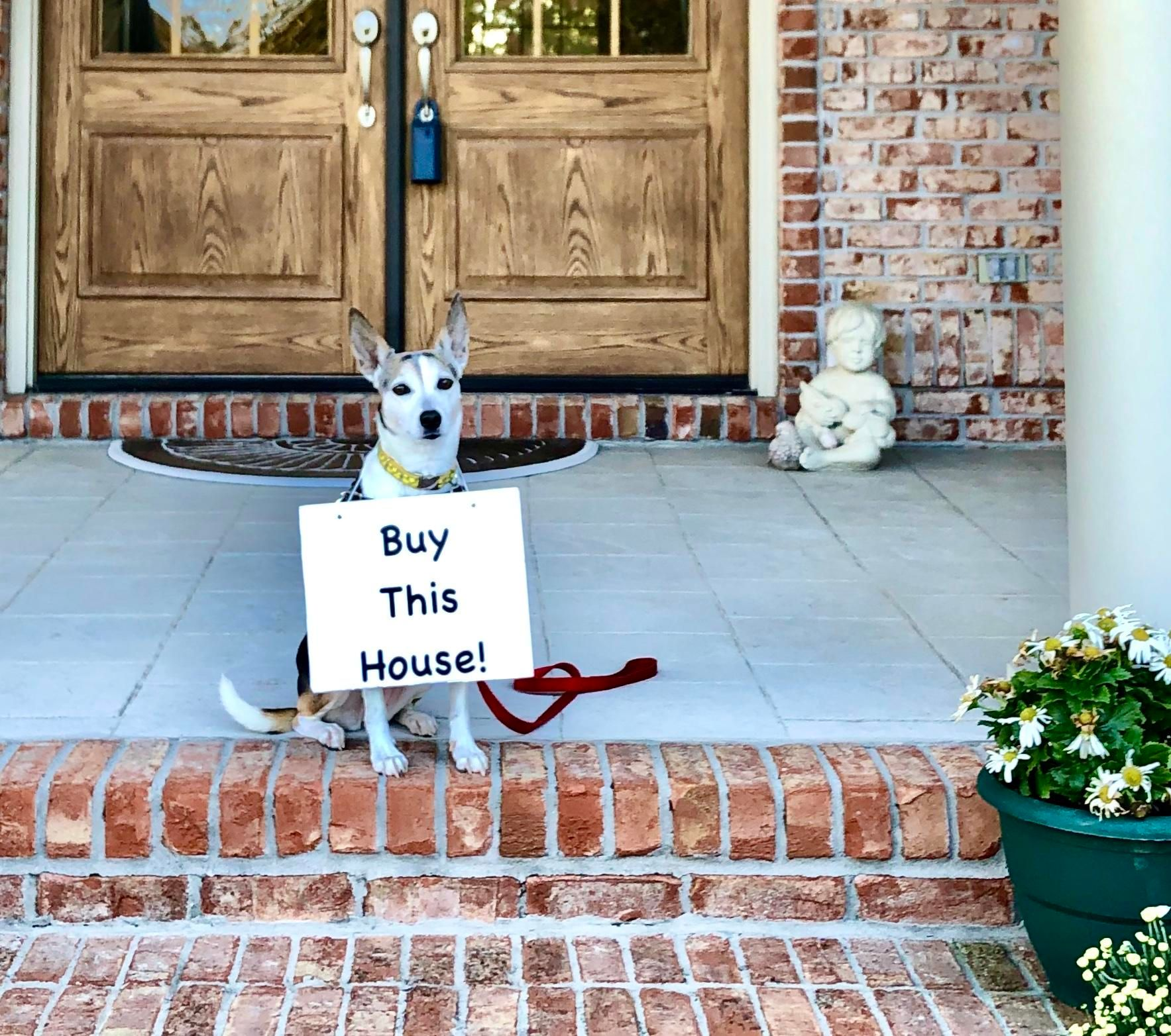 Buy this house