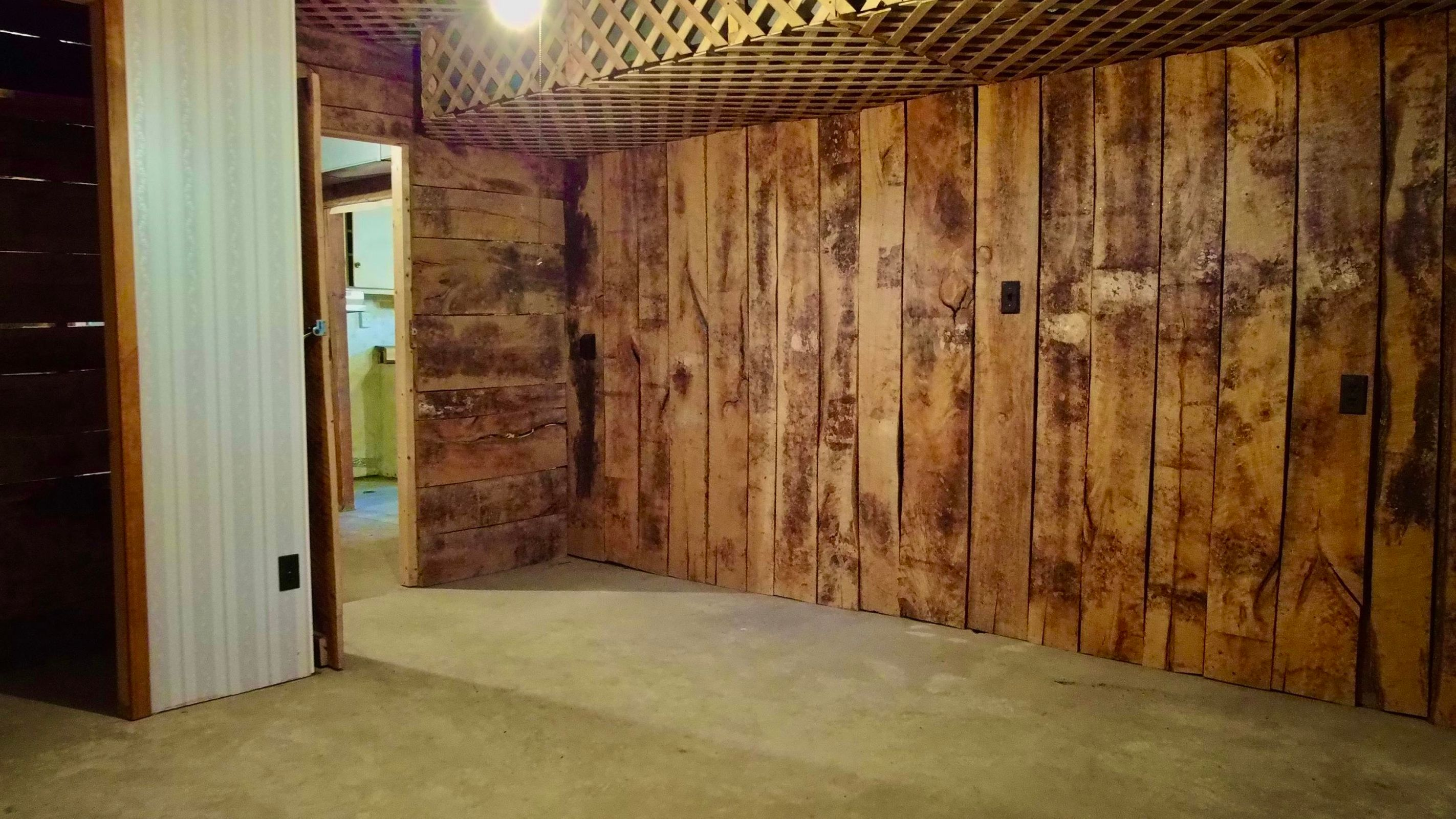 Basement Partially Finished Room