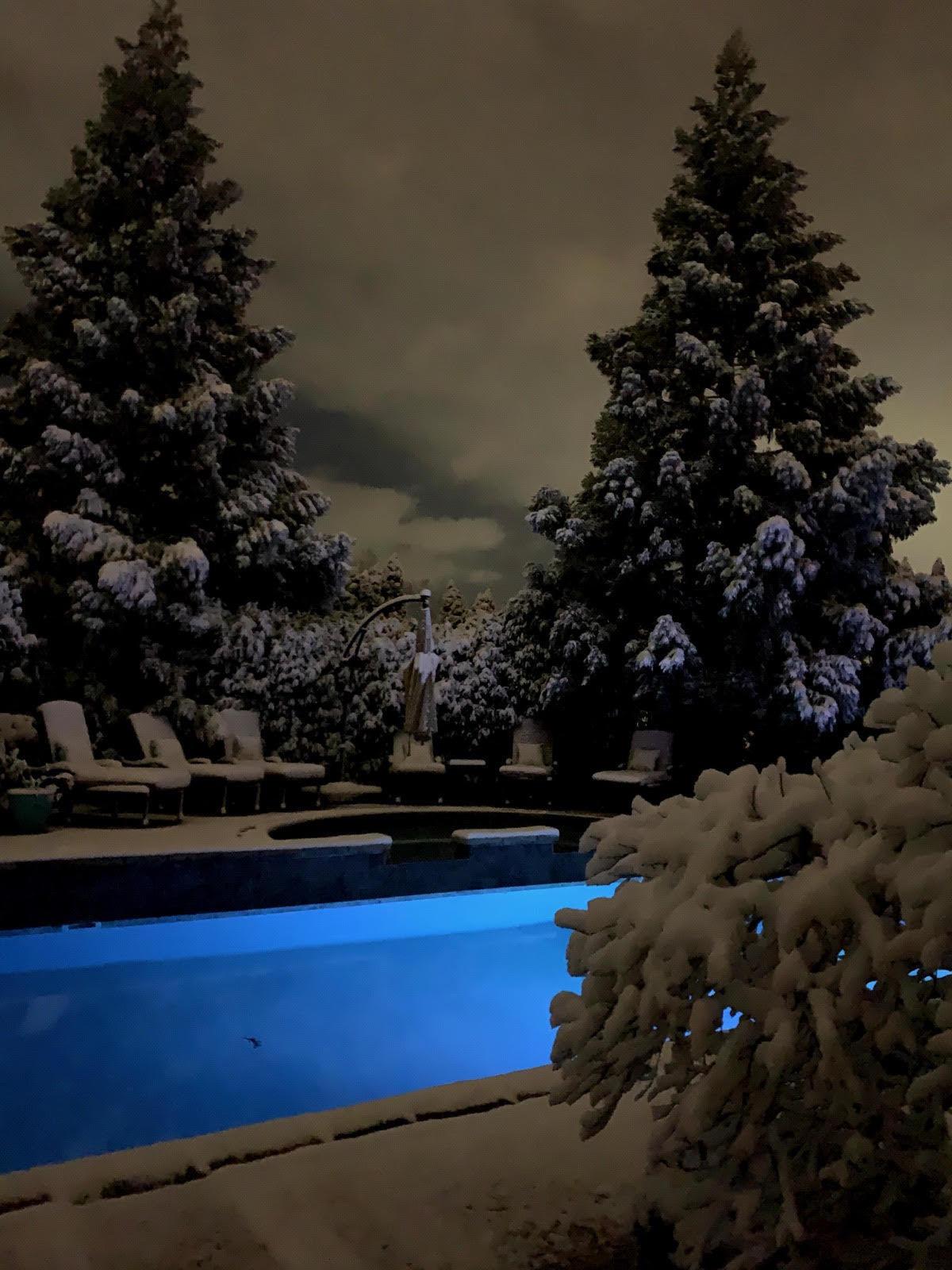 Winter Pool Scene